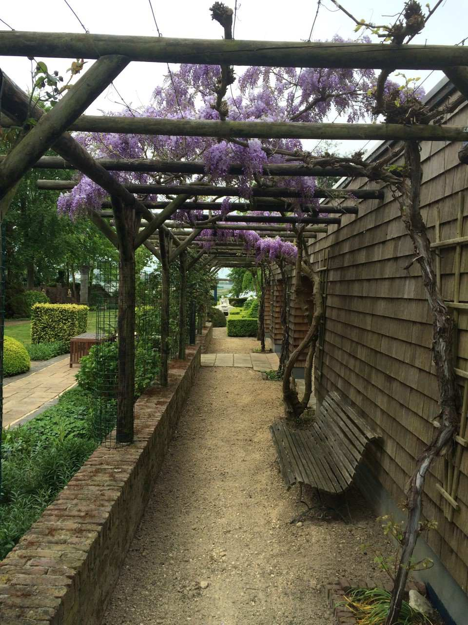 Onderhoud tuin Afink Hoveniers