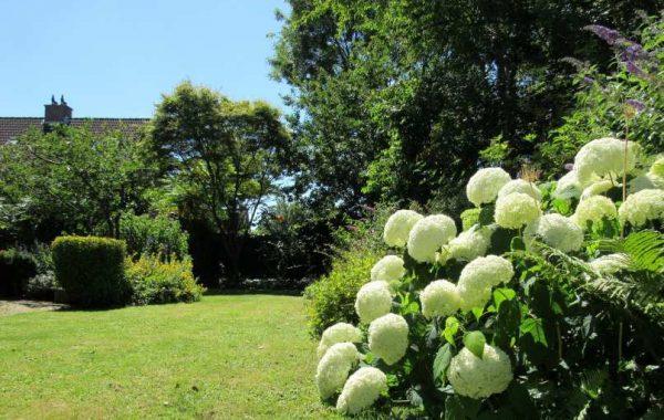 Onderhoud tuin Koog